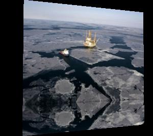 Роснефть уступила Баренцево море Газпрому