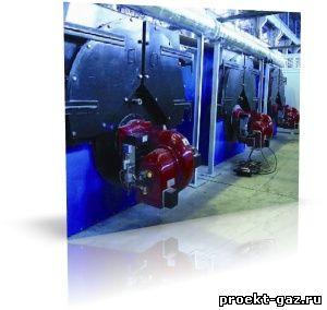 Шесть новых газовых котельных заработают в Лужском районе Ленобласти